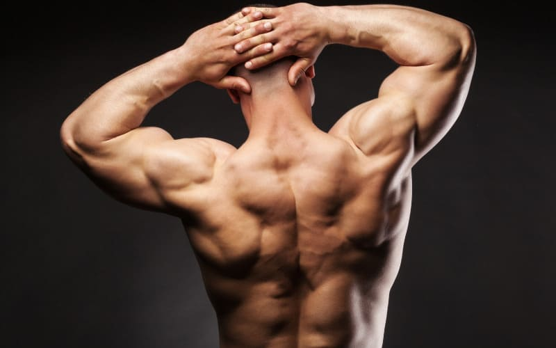 How To Do A Whole Body Workout And Gain Muscle Growth Without Using Equipment